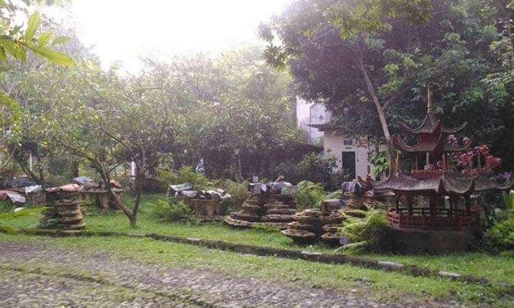 Agro Tawon Rimba