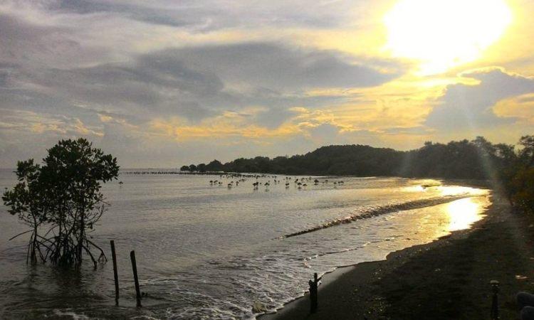 Pantai Penunggul