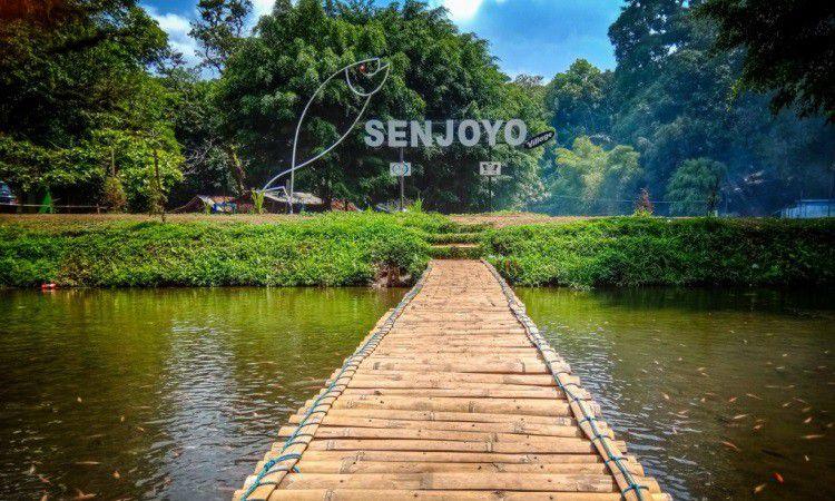 Senjoyo
