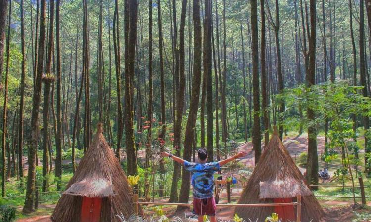 Taman Hutan Rakyat Ngargoyoso, Karanganyar