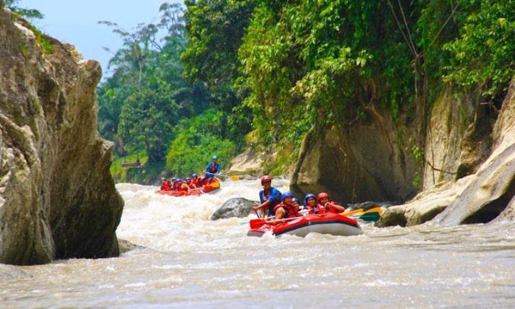 Arung Jeram Sungai Bingei