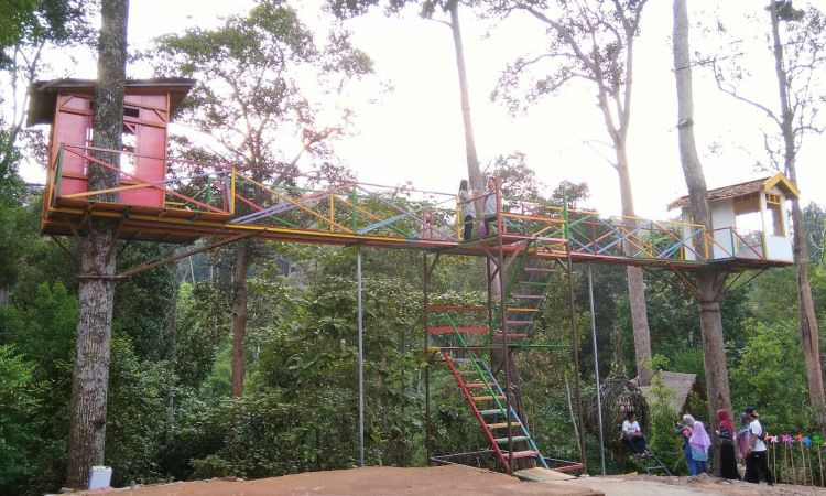 Batam Forest Top