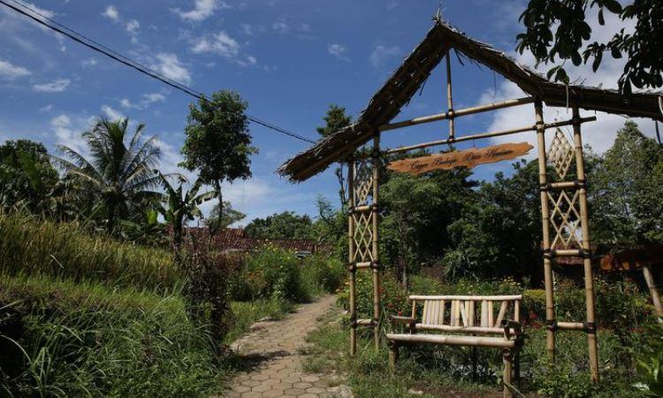 Desa Wisata Osing Kemiren