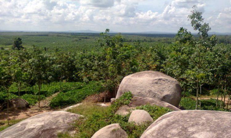 Taman Batu Granit Tanjung Bintang