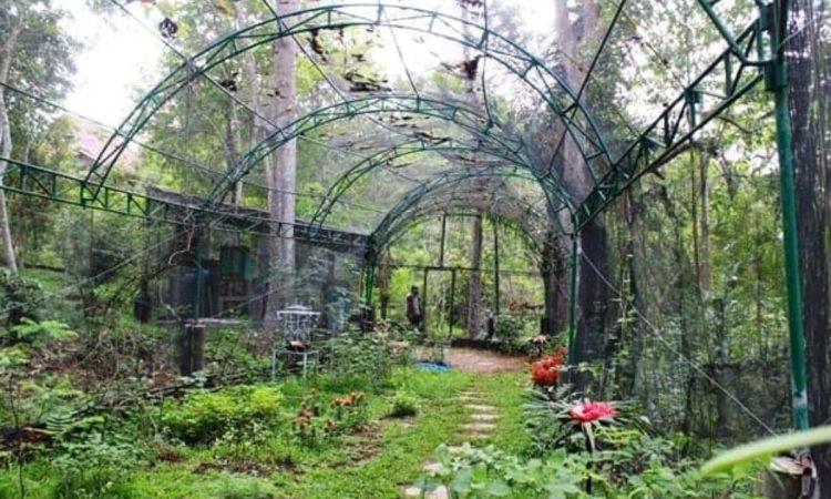 Taman Kupu Kupu Gita Persada