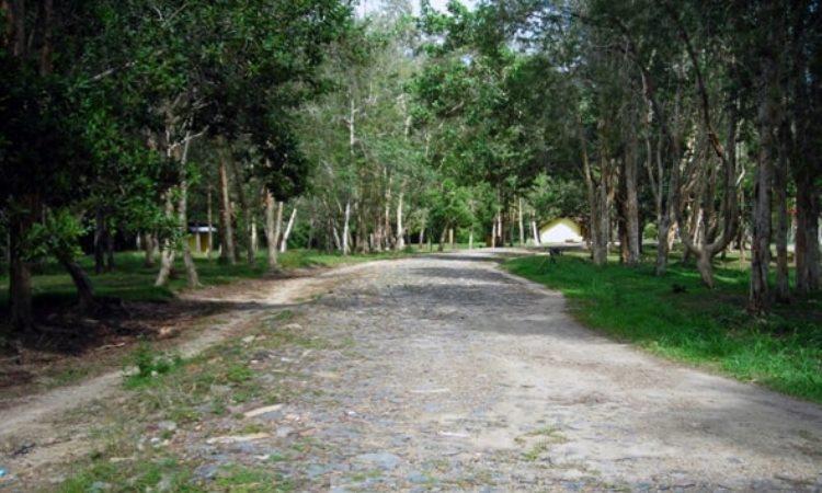 Hutan Wanawisata