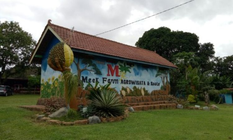 Agrowisata Kebun Durian