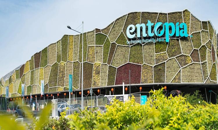 Penang Butterfly Farm Entopia
