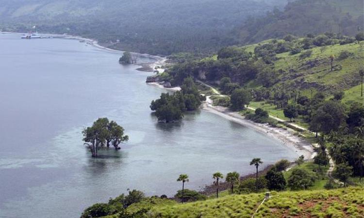 Pulau Atauro