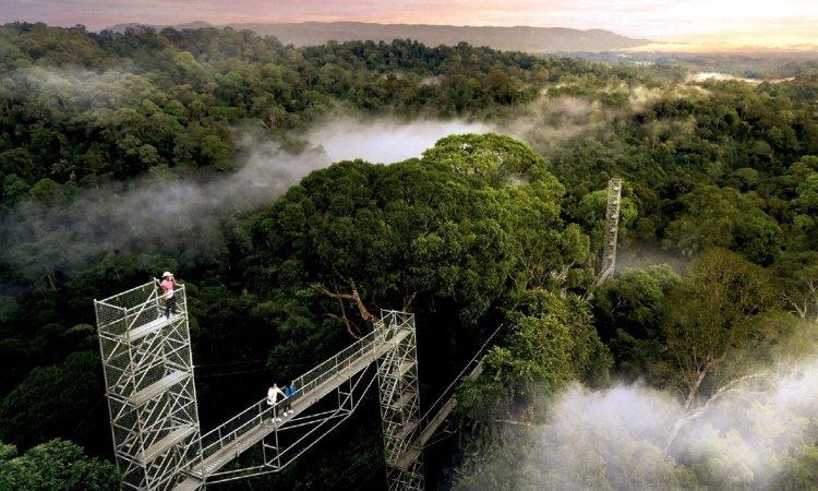 Taman Nasional Ulu Temburong