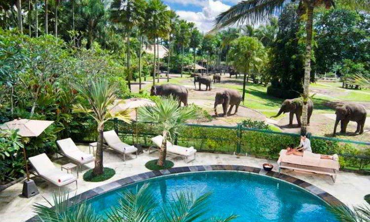 Mason Elephant Park & Lodge