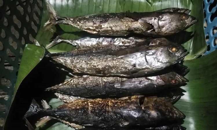 Ikan Cakalang Asar