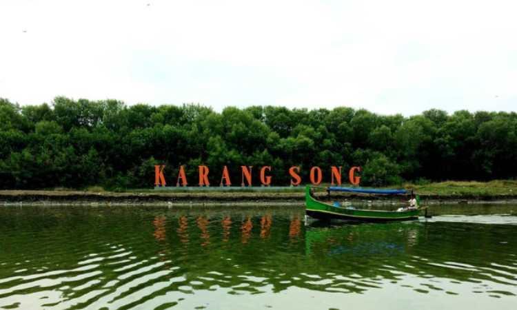 Hutan Mangrove Karangsong