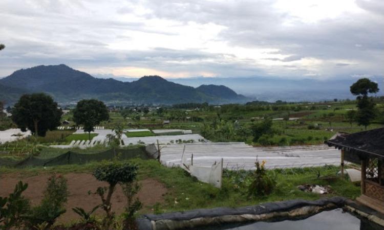 Kampung Wisata Desa Sarongge