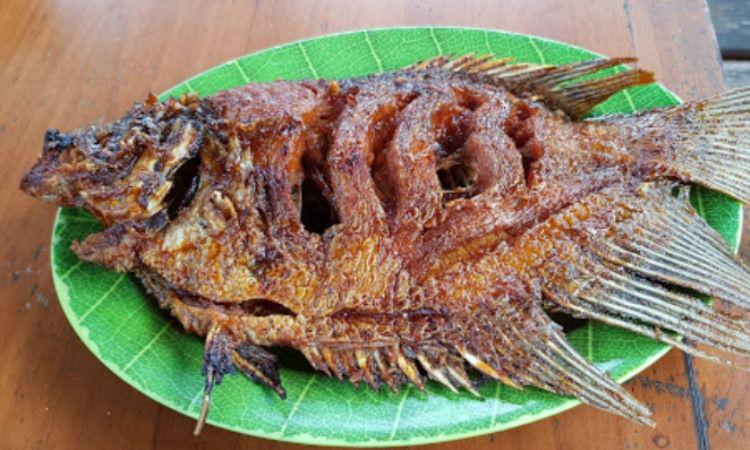 Lesehan Ikan Bakar Klotok