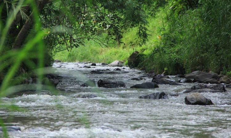 Tubing Adventure Kali Betoto