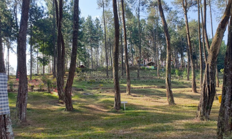 Wanawisata Balegandrung