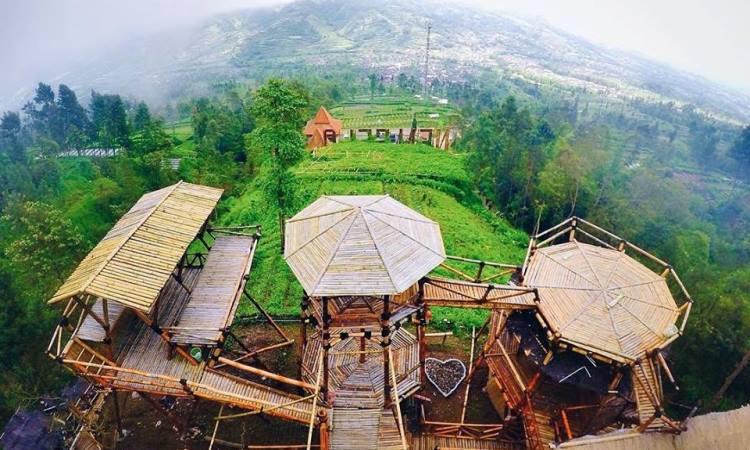 Oemah Bamboo