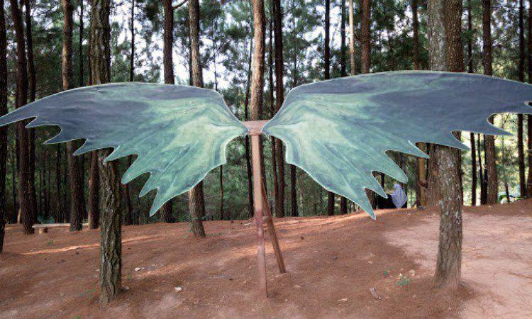 Wisata Pinus Gemaharjo