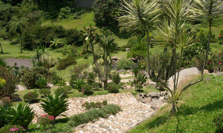 Jalan Air dan Taman Rhododendron