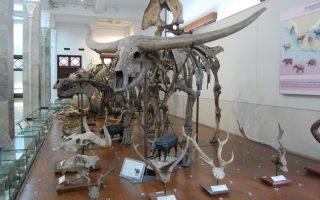 14 Museum Terbaik di Bandung yang Populer Sebagai Wisata Edukasi