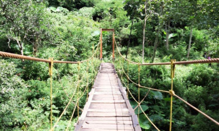 Taman Hutan Raya Djuanda