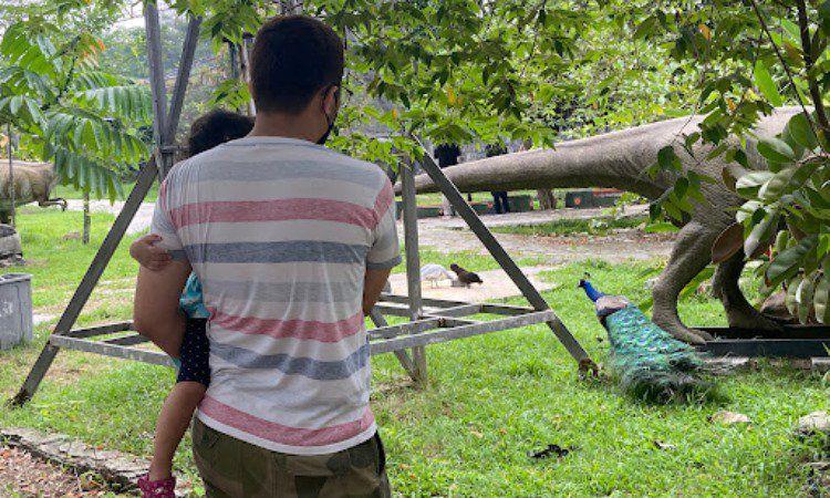 Aktivitas Menarik Dilakukan Cikao Park