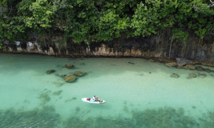 Aktivitas Menarik di Pulau Sempu