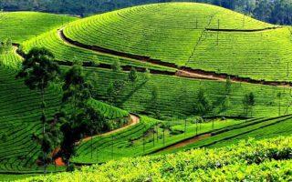 15 Tempat Wisata Alam di Tasikmalaya Terbaru & Paling Hits
